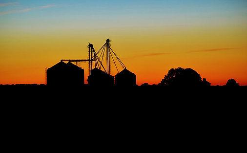 silhouette-farm-william-bartholomew.jpg