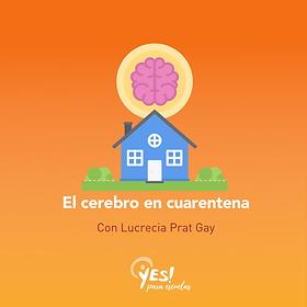 #vocesxlaeducacion (1).png