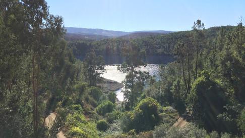 Ausblick vom Grundstück auf den angrenzenden Wanderweg