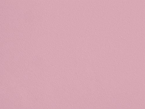 Rose Poudré – S49
