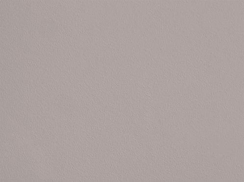 Evening Grey – F19