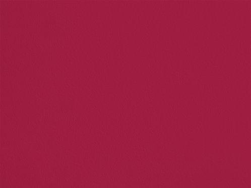 Raspberry – VINT05
