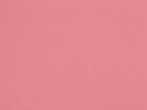 Rose d'Amour – SL17