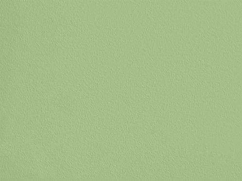 Vert Jeune – S62