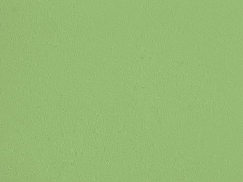 Vert Jeune – S63