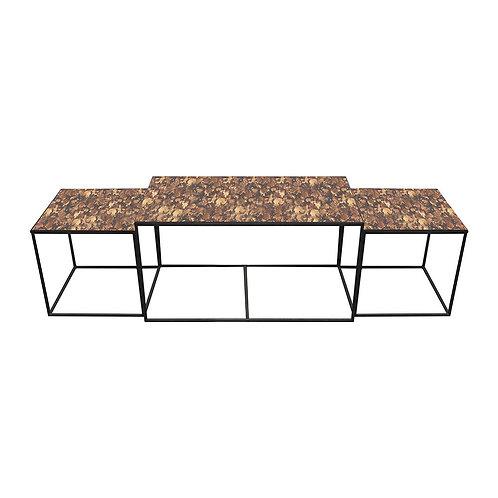 Tortoise Trinity Coffee Table - Set of Three