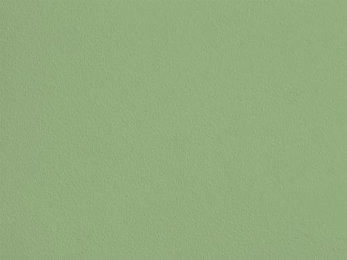 Ever Green – POP18