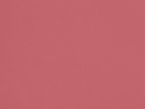 Rose Pompadour – HC113