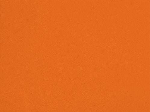 Carrot – VINT01