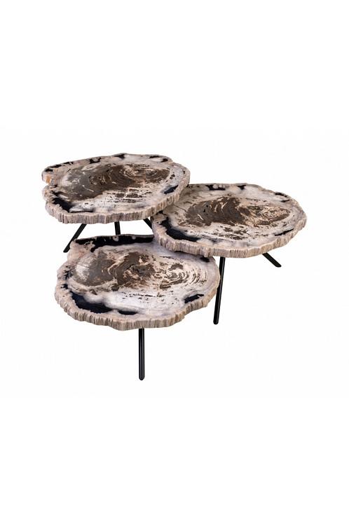 Petrified Wood Set Of 3 Tables