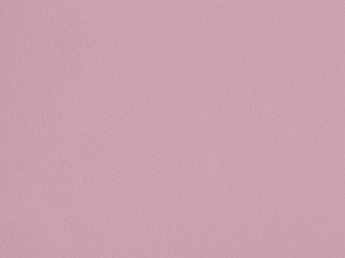 Rose Poudré – S48