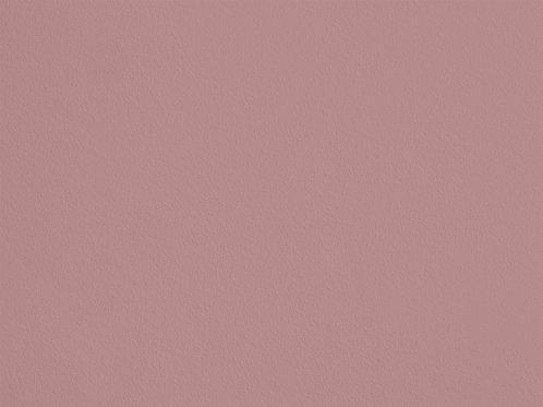 Light Peach Blossom Colour – SC214A