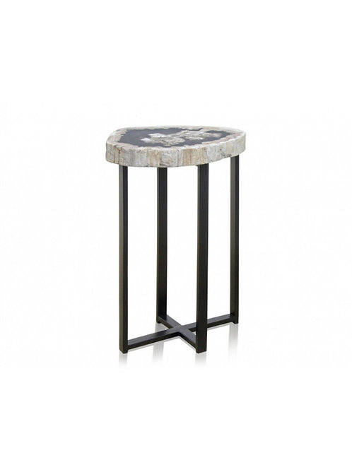 Petrified Wood Sidetable