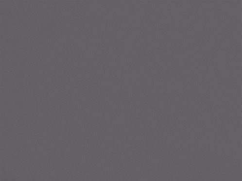 Arum Sauvage – C01