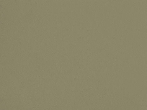 Dusty Green – F37