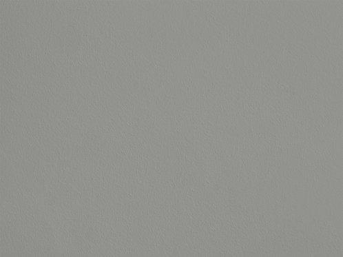 Euphorbe des Bois – C26