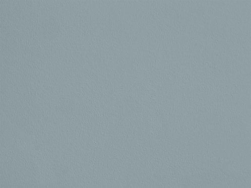 Lichen de Granit – C03