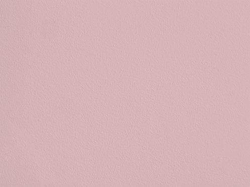 Corail Rose – S67