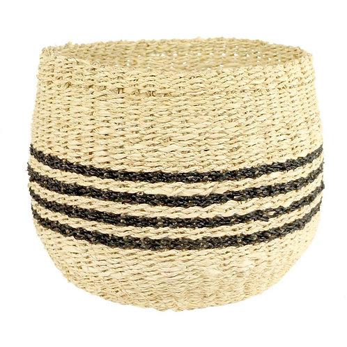 Black Stripe Basket Ted