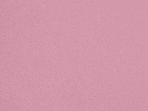 Rose Poudré – S47