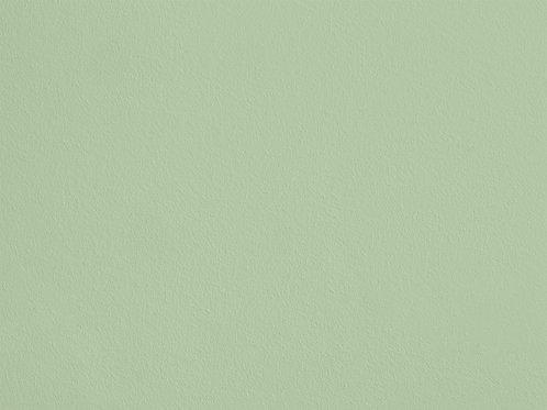 Vert Jeune – S60