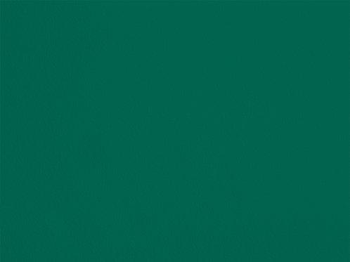 Cactus Green – RSB21