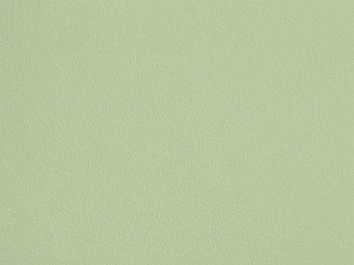Vert Jeune – S61