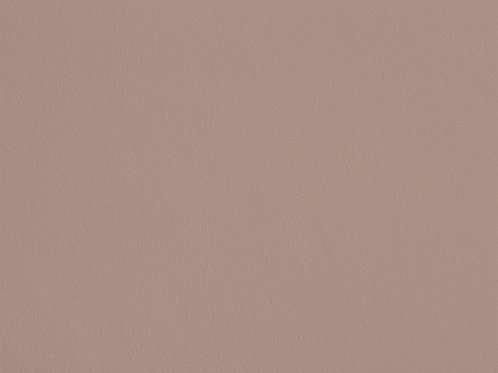 Brun Cèpe – S101