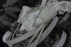 Photographie Fleuristerie