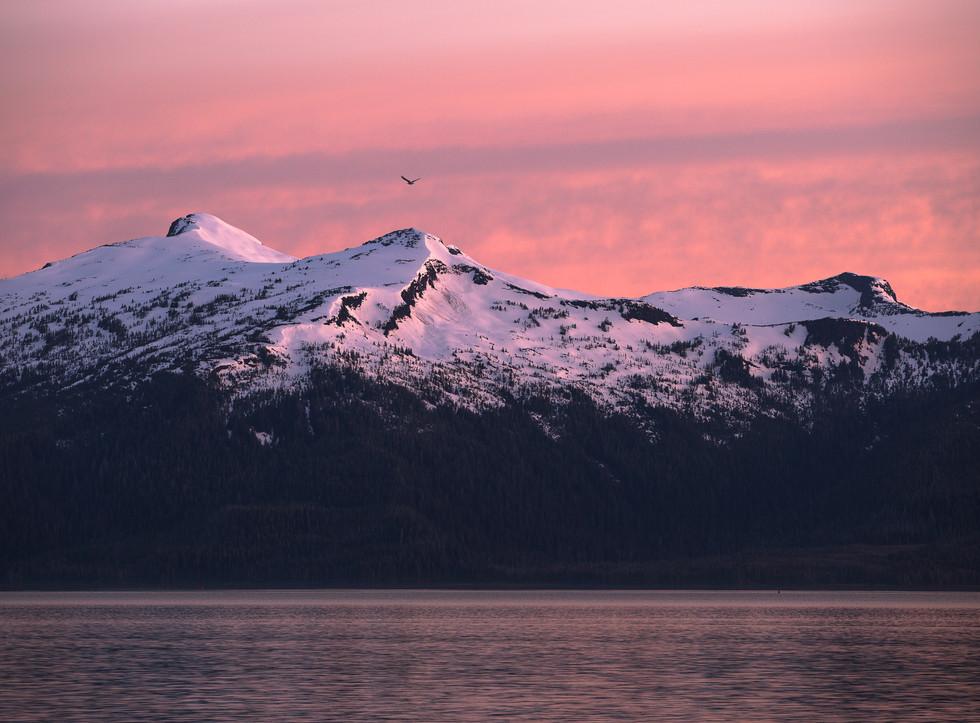 THE ENDLESS BEAUTY OF THE ALASKAN COAST