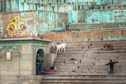 People and animals going about their business on the steps next to the banks of the Ganges River in Varanasi, India.