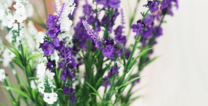 hoa giả trang trí rẻ đẹp