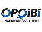 20120307_170631_opqibi-logo.jpg