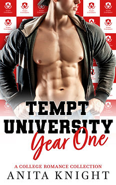 Tempt University Year One ebook.jpg