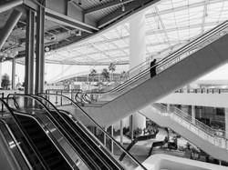 Myriad of Escalators