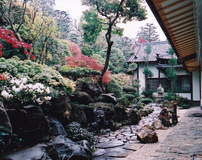 宗泉寺 中庭
