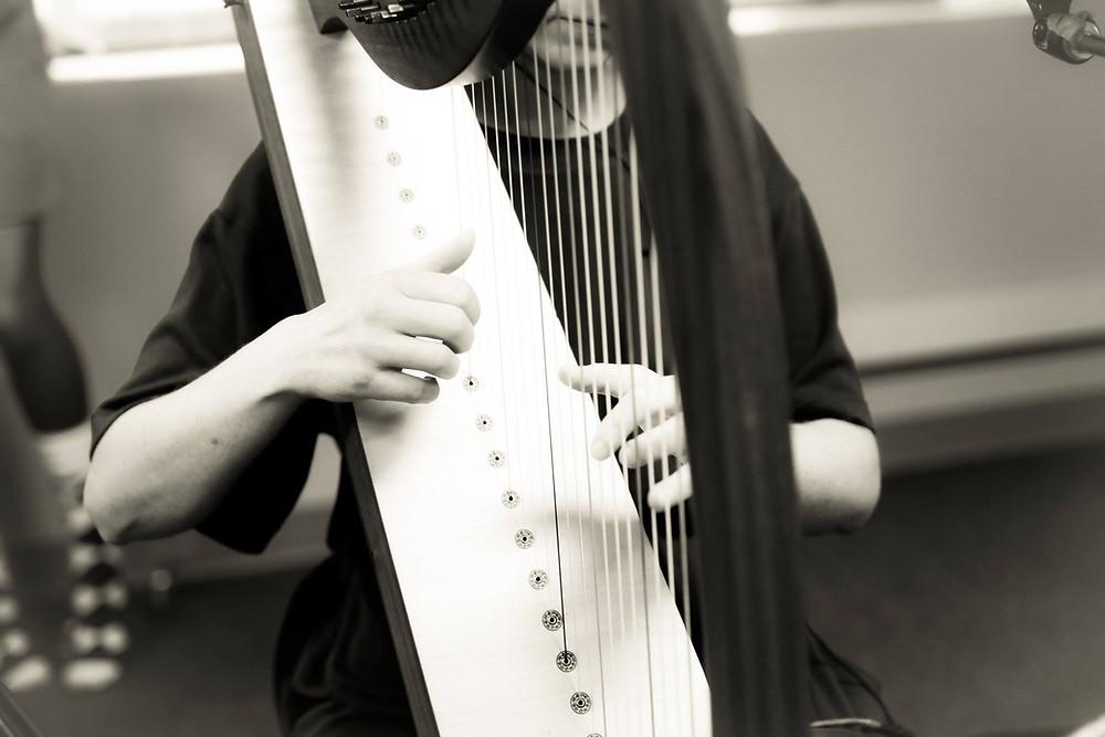 hands on harp strings