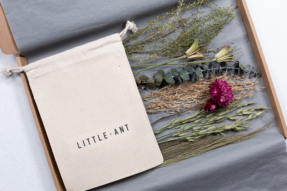 dried flowers boxed - Little Ant Store