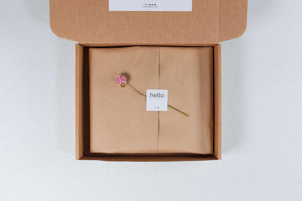 Hello Box - http://www.littleantstore.com/little-ant