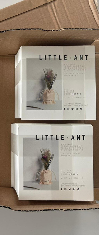 Little Ant - Packaging