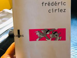Petite critique littéraire inopinée de BettieBook (2018), de Frédéric Ciriez.