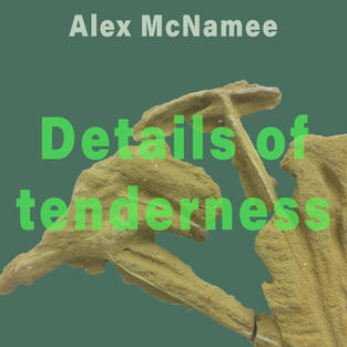 Details of Tenderness