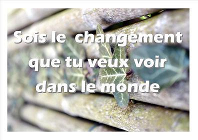 sois le changement.jpg