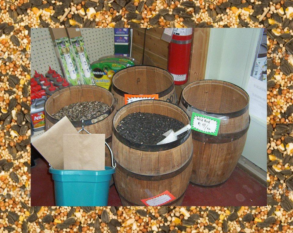 Seed Bulk Barrels