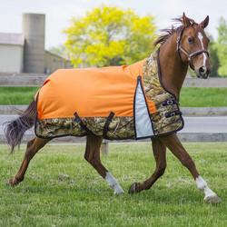 Como Horse Blanket