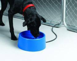 Heated Dog Bowls