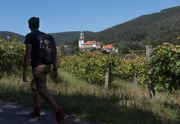 portugal-minho-caminho-ponte-de-lima-hik