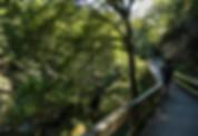 portugal-minho-vez-river-walking hiking tour