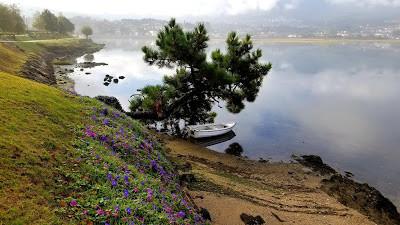 Camino de Santiago Lakeside View