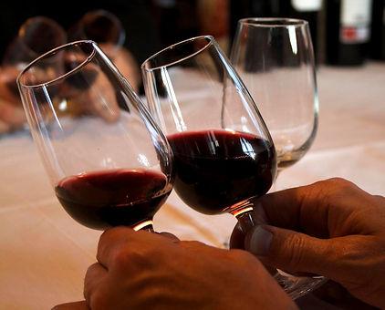 Spain Basque Country Rioja Region Wine Tasting